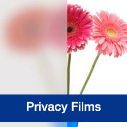 Privacy Films